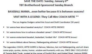 Baseball Mania Save the Date