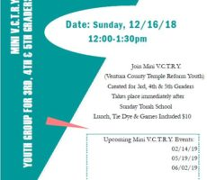 Mini VCTRY Events