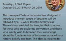 Taste-of-Judaism-2018-poster-mini